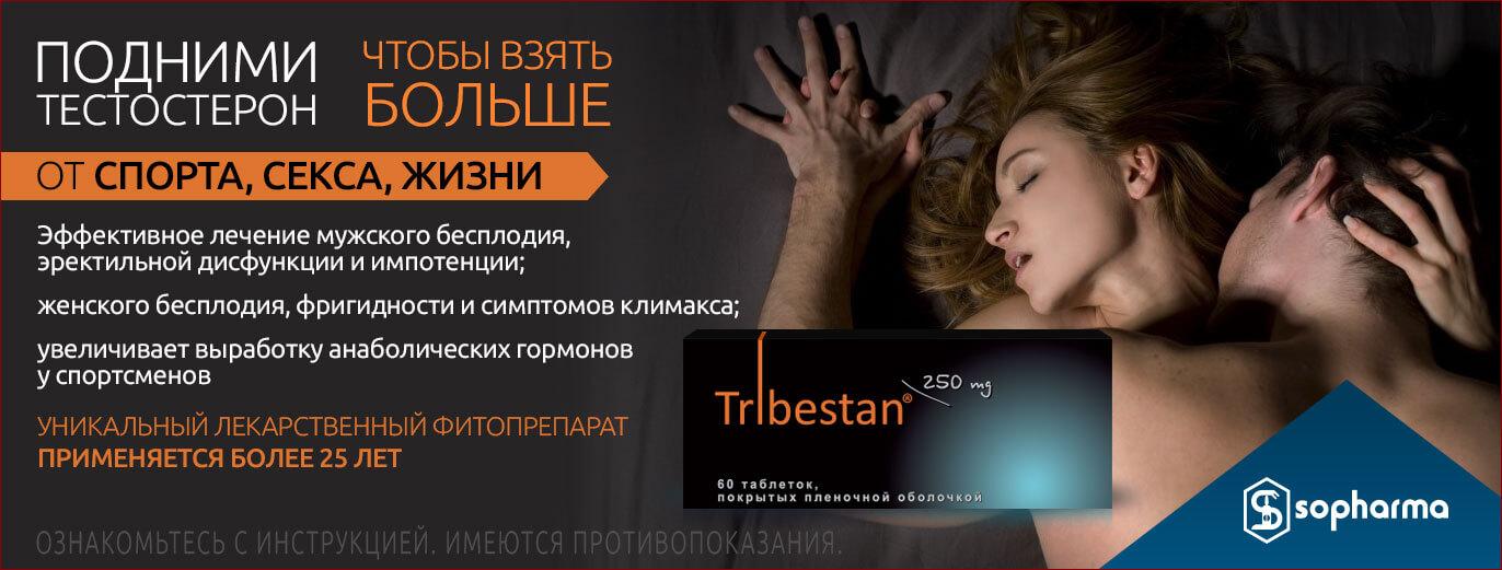 bn-tribestan222